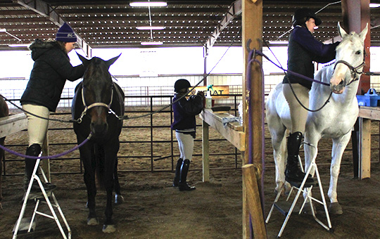 K State Equestrian To Face Off Against Baylor And Tcu
