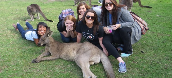 Study abroad student travels to Phillip Island, animal sanctuary