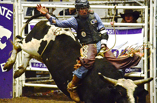 K State Rodeo Club To Host Bull Bash The Collegian