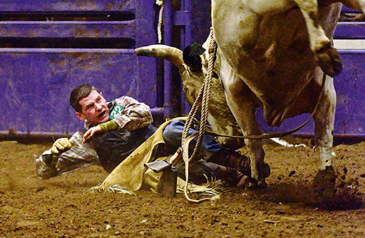 Bull Riders Endure Bull Snot Injuries For Chance At
