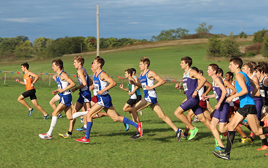 Leadership key for inexperienced cross country rosters