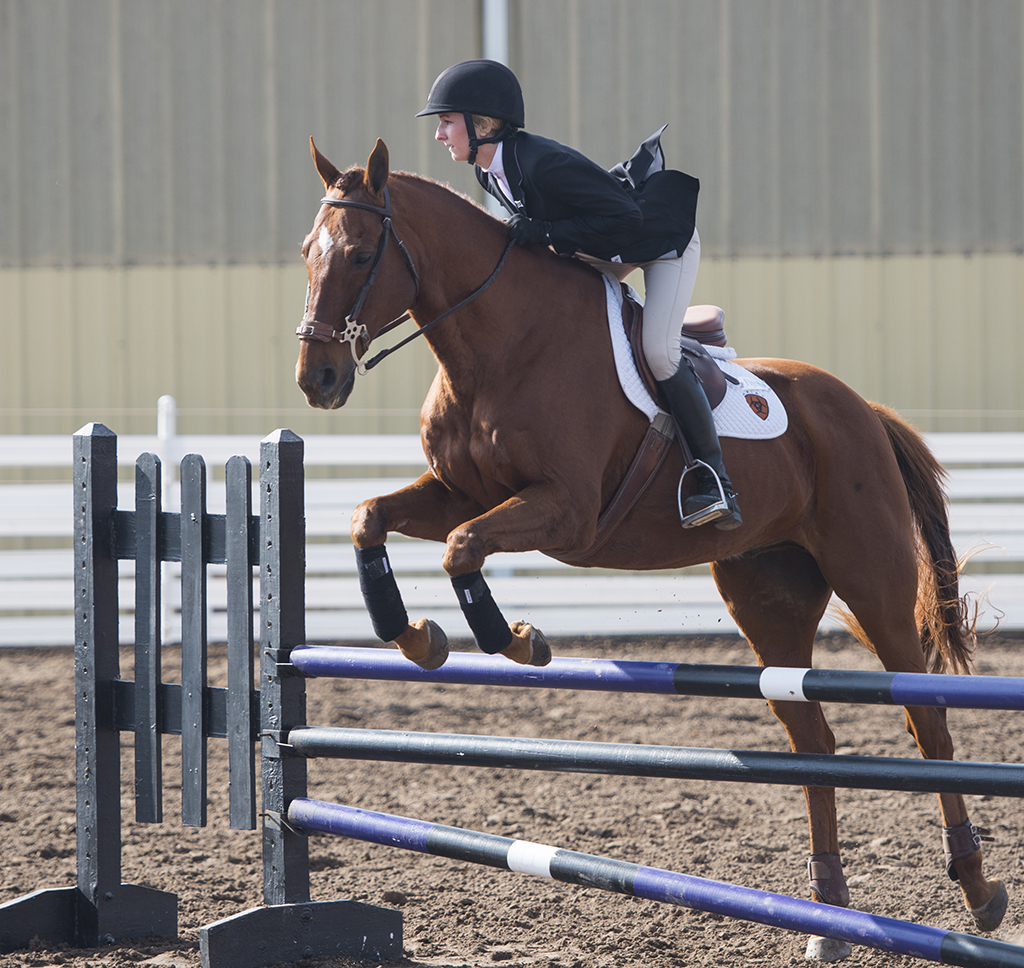 K State Equestrian Drops Home Winning Streak Against