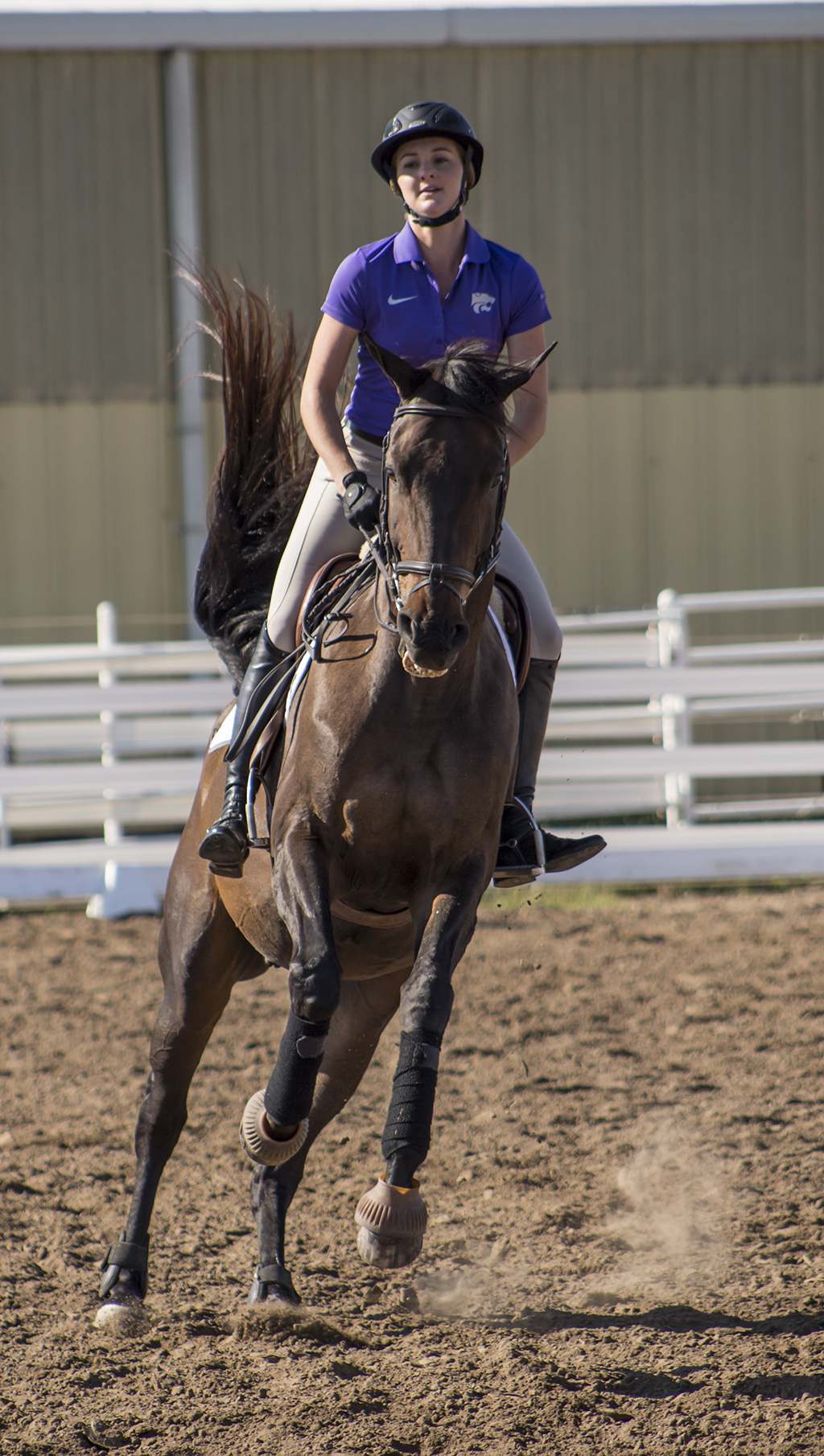 Final Equestrian Meet Results In Loss The Collegian