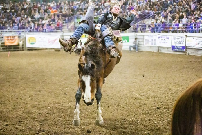Saddle Up K State Hosts 64th Annual K State College Rodeo