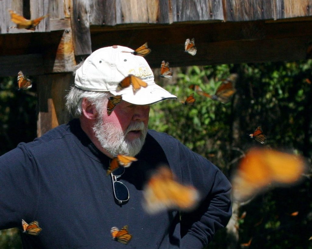 """Chip"" Taylor, an insect ecologist and professor at the University of Kansas, founded Monarch Watch in 1992. (Courtesy photo by Orley ""Chip"" Taylor)"